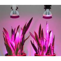 1.1.7 Лампа для растений ФИТО (FITO)