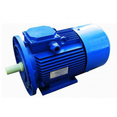 Электродвигатель АИР 71B2 3ф 1,1 кВт 3000 об/мин 1081 TDM