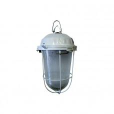 Светильник НСП 02-100-002.01 У2 (с решеткой, стекло, крюк, в сборе, инд.упак) TDM