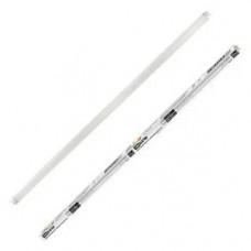Лампа люминесцентная- 36Вт /765, T8, 6500 К
